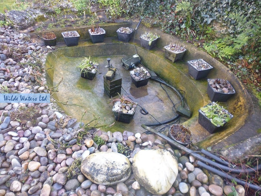 Pond Maintenance and Cleaning